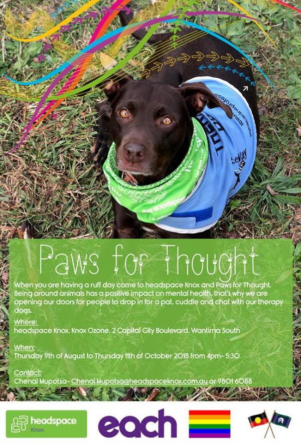 ca6d6ccfe Paws for Thought (dog space)